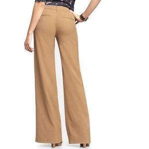 NEW Gap Essential Wide Leg Cotton Chinos